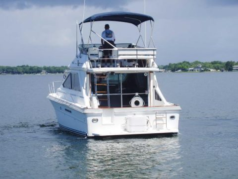 AMAZING 1988 Sea Ray 345 Sedan Bridge for sale