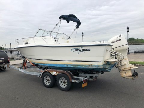 NICE 2004 Sea Boss for sale